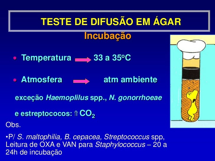 TESTE DE DISCO DIFUSÃO EM ÁGAR<br /> Fácil execução<br /> Flexibilidade na escolha dos antibióticos <br />Padronização dos...