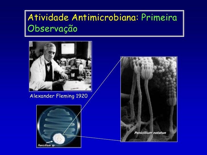 Atividade Antimicrobiana: Primeira Observação<br />Alexander Fleming 1920<br />