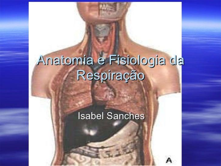 Anatomia e Fisiologia da Respiração Isabel Sanches