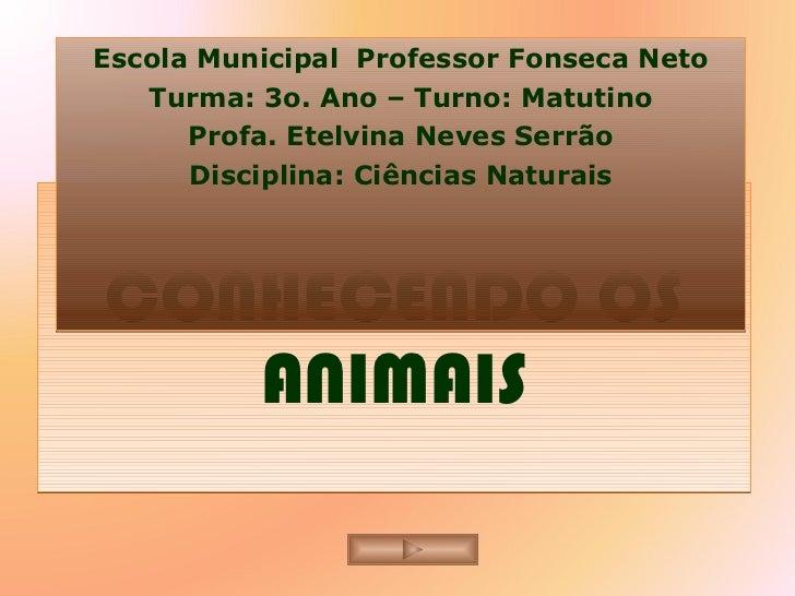 CONHECENDO OS ANIMAIS Escola Municipal  Professor Fonseca Neto Turma: 3o. Ano – Turno: Matutino Profa. Etelvina Neves Serr...