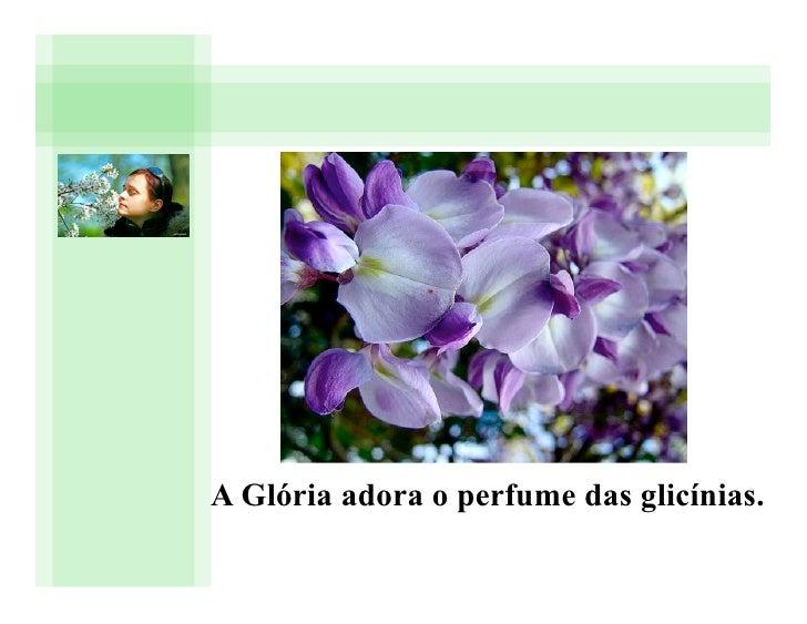 A Glória adora o perfume das glicínias.
