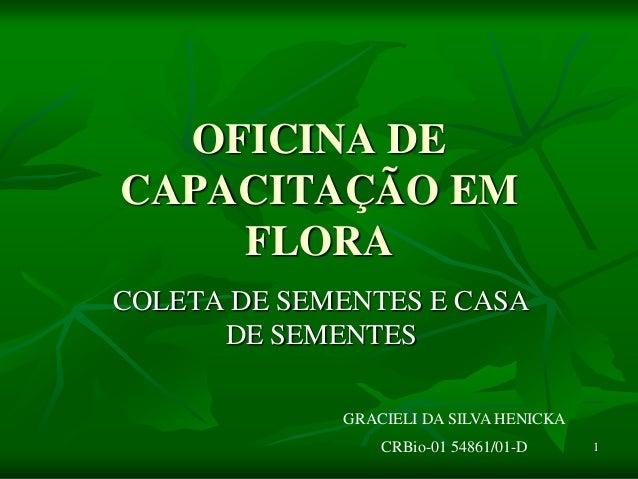 1OFICINA DECAPACITAÇÃO EMFLORACOLETA DE SEMENTES E CASADE SEMENTESGRACIELI DA SILVA HENICKACRBio-01 54861/01-D