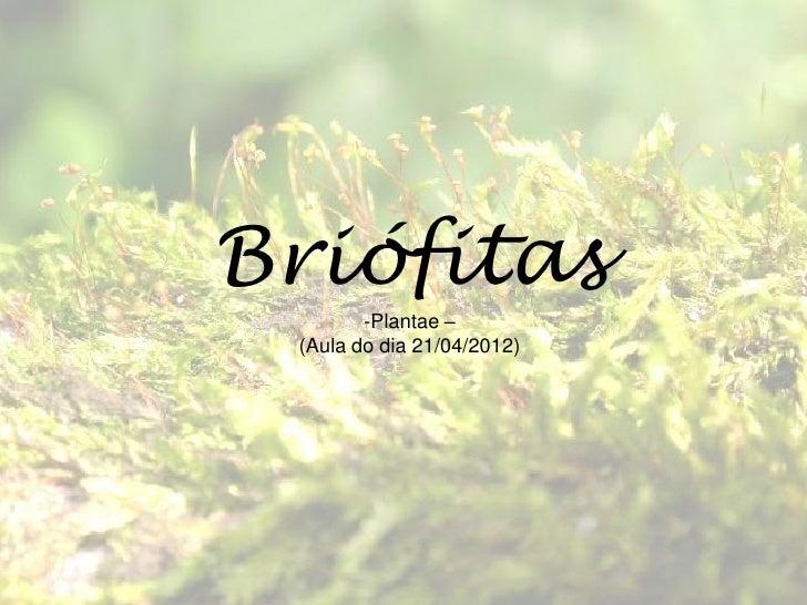 Briófitas        -Plantae – (Aula do dia 21/04/2012)