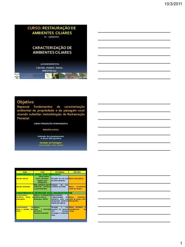 10/3/2011 1 LUCIANO MONTOYA CURITIBA– PARANÁ – BRASIL MARÇO DE 2011 Medrado & Consultores Agroflorestais Associados Ltda. ...
