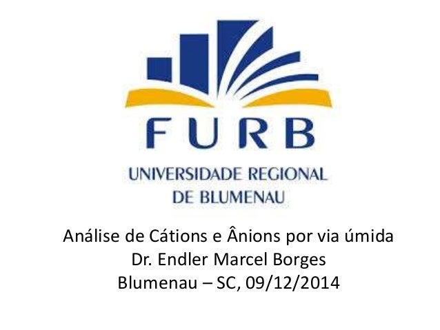 Análise de Cátions e Ânions por via úmida  Dr. Endler Marcel Borges  Blumenau – SC, 09/12/2014