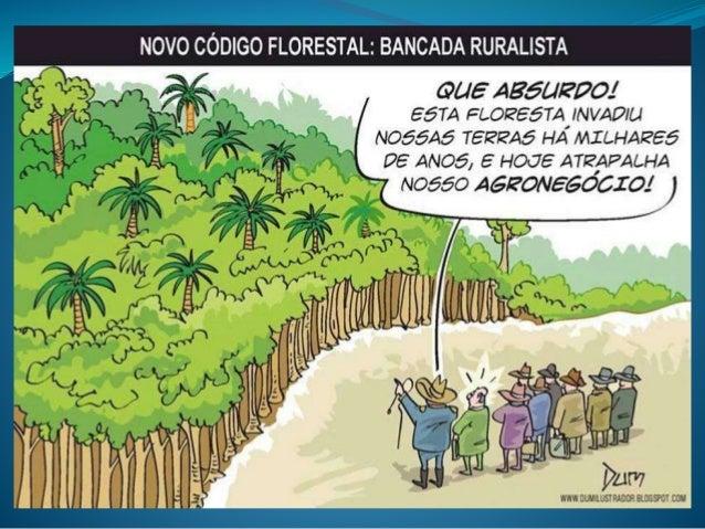 João Alfredo Telles Melo Direito Ambiental Fa7