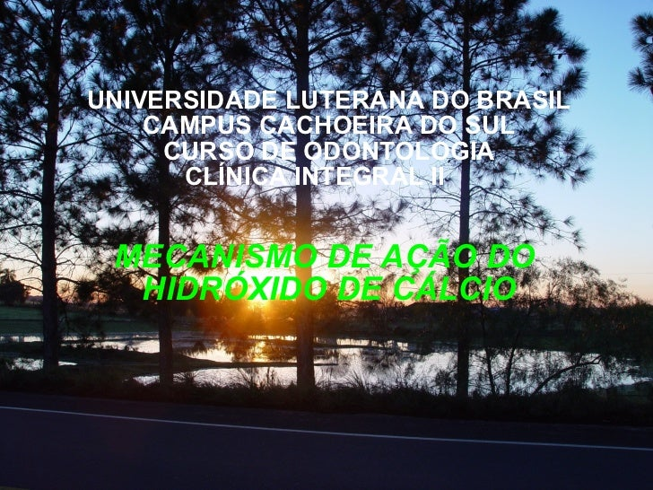 UNIVERSIDADE LUTERANA DO BRASIL CAMPUS CACHOEIRA DO SUL CURSO DE ODONTOLOGIA CLÍNICA INTEGRAL II   MECANISMO DE AÇÃO DO  H...