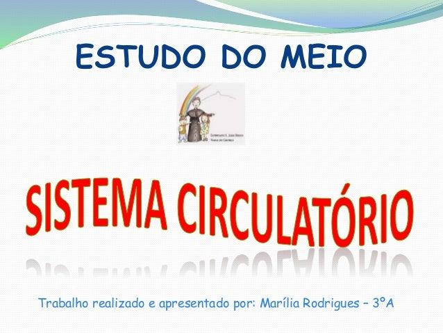 ESTUDO DO MEIO  Trabalho realizado e apresentado por: Marília Rodrigues – 3ºA