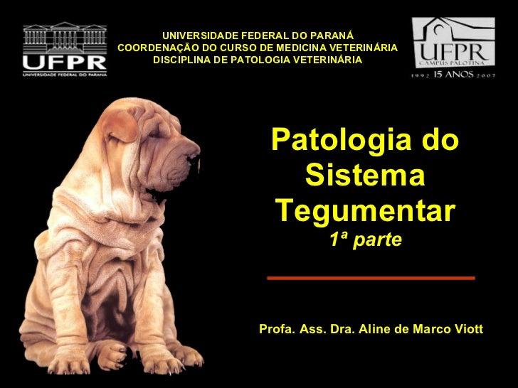 Patologia do Sistema Tegumentar 1ª parte <ul><li>Profa. Ass. Dra. Aline de Marco Viott </li></ul>UNIVERSIDADE FEDERAL DO P...