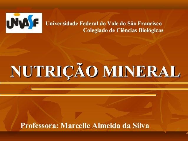 Universidade Federal do Vale do São Francisco Colegiado de Ciências Biológicas  NUTRIÇÃO MINERAL Professora: Marcelle Alme...