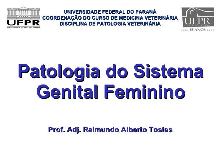 Patologia do Sistema Genital Feminino <ul><li>Prof. Adj. Raimundo Alberto Tostes </li></ul>UNIVERSIDADE FEDERAL DO PARANÁ ...