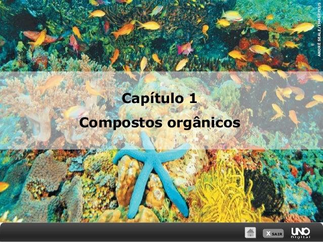 X SAIR ANDRÉSEALE/IMAGEPLUS Capítulo 1 Compostos orgânicos
