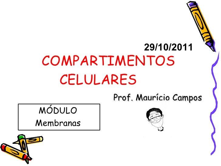 COMPARTIMENTOS CELULARES Prof. Maurício Campos 29/10/2011 MÓDULO  Membranas