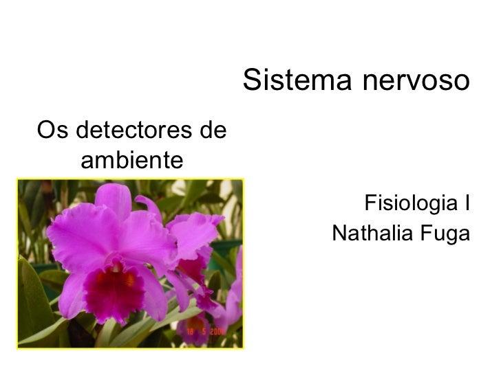 Sistema nervoso Fisiologia I Nathalia Fuga Os detectores de ambiente