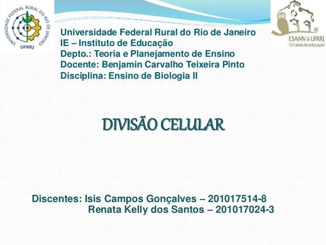 Universidade Federal Rural do Rio de Janeiro IE – Instituto de Educação Depto.: Teoria e Planejamento de Ensino Docente: B...