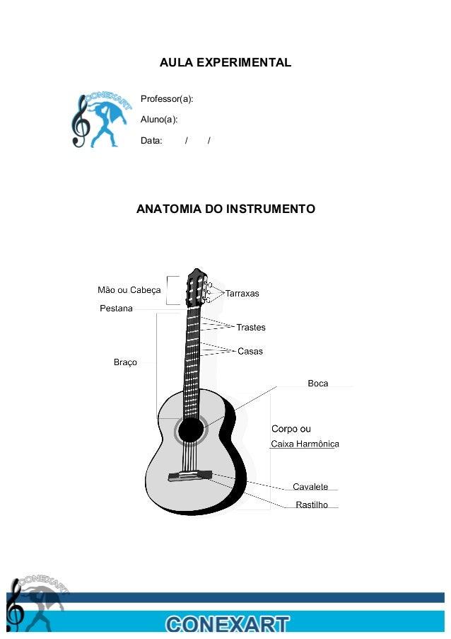 AULA EXPERIMENTAL       Professor(a):       Aluno(a):       Data:       /   /       ANATOMIA DO INSTRUMENTO
