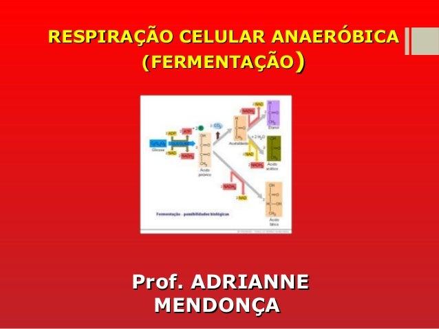RESPIRAÇÃO CELULAR ANAERÓBICARESPIRAÇÃO CELULAR ANAERÓBICA (FERMENTAÇÃO(FERMENTAÇÃO)) Prof. ADRIANNEProf. ADRIANNE MENDONÇ...