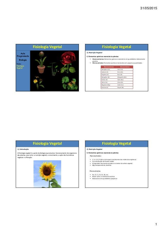 31/05/2015 1 Aula Programada Biologia Tema: Fisiologia Vegetal Fisiologia Vegetal 1) Introdução A fisiologia vegetal é a p...