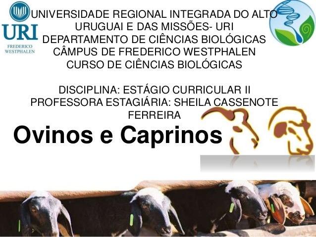 UNIVERSIDADE REGIONAL INTEGRADA DO ALTO URUGUAI E DAS MISSÕES- URI DEPARTAMENTO DE CIÊNCIAS BIOLÓGICAS CÂMPUS DE FREDERICO...