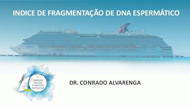 DR. CONRADO ALVARENGA INDICE DE FRAGMENTAÇÃO DE DNA ESPERMÁTICO