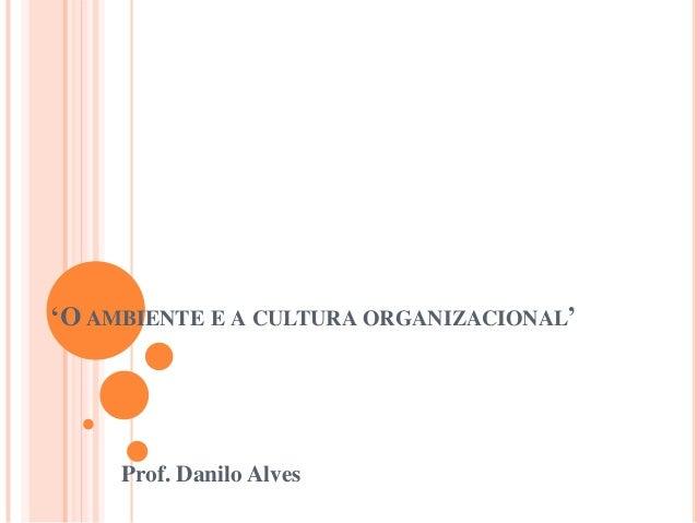 'O AMBIENTE E A CULTURA ORGANIZACIONAL'     Prof. Danilo Alves
