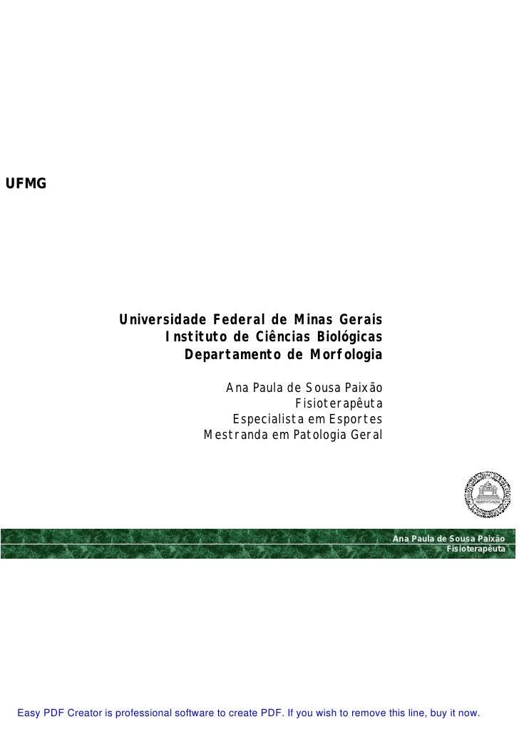 UFMG                            Universidade Federal de Minas Gerais                              Instituto de Ciências Bi...