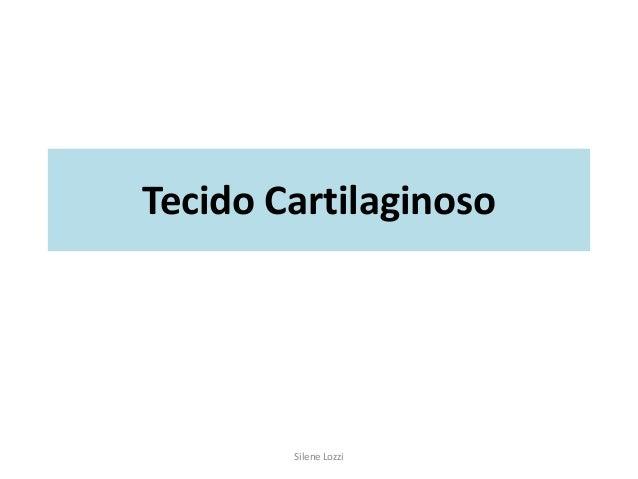 Tecido Cartilaginoso Silene Lozzi