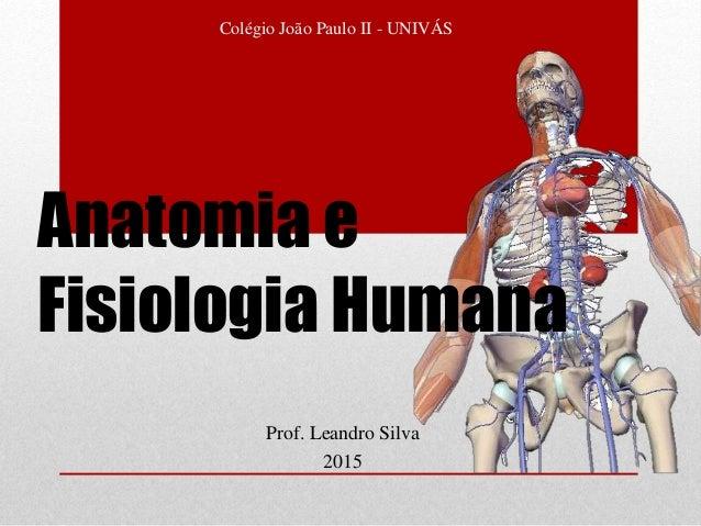 Prof. Leandro Silva 2015 Colégio João Paulo II - UNIVÁS Anatomia e Fisiologia Humana