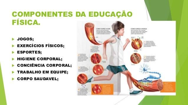 6f2cf0c3a1 3. COMPONENTES DA EDUCAÇÃO FÍSICA.