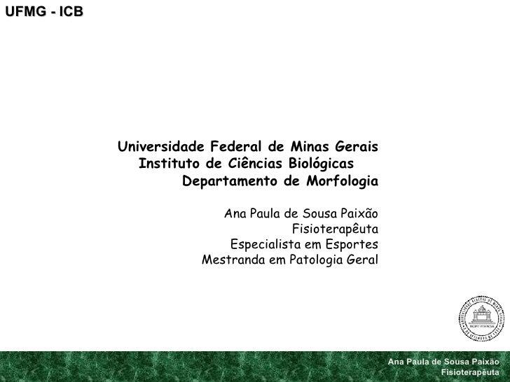 Ana Paula de Sousa Paixão Fisioterapêuta UFMG - ICB Universidade Federal de Minas Gerais Instituto de Ciências Biológicas ...