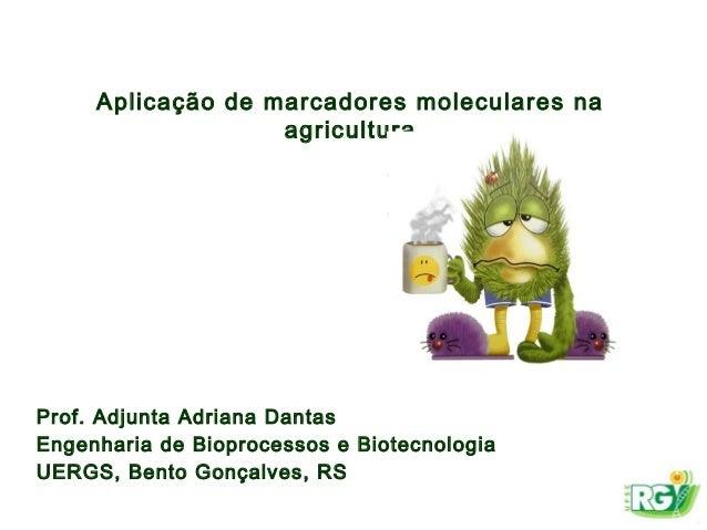 Aplicação de marcadores moleculares na agricultura Prof. Adjunta Adriana Dantas Engenharia de Bioprocessos e Biotecnologia...
