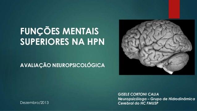 FUNÇÕES MENTAIS SUPERIORES NA HPN AVALIAÇÃO NEUROPSICOLÓGICA  Dezembro/2013  GISELE CORTONI CALIA Neuropsicóloga – Grupo d...
