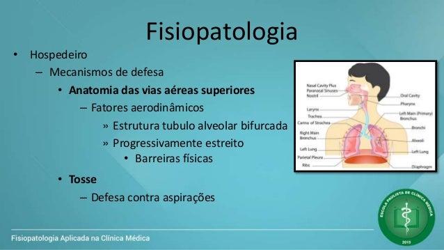 Fisiopatologia • Hospedeiro – Mecanismos de defesa • Anatomia das vias aéreas superiores – Fatores aerodinâmicos » Estrutu...