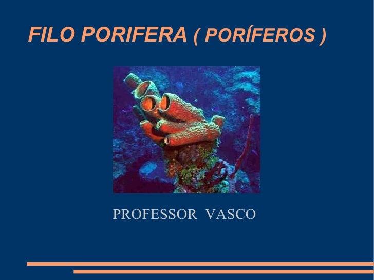 FILO PORIFERA  ( PORÍFEROS ) PROFESSOR  VASCO