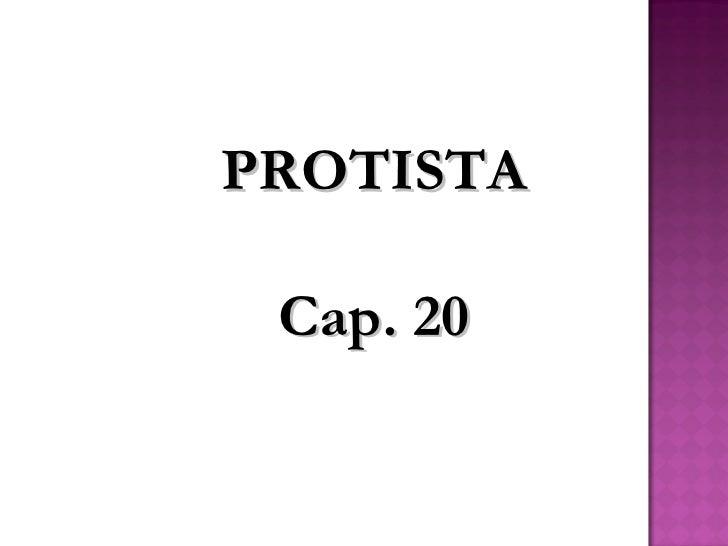 PROTISTA Cap. 20