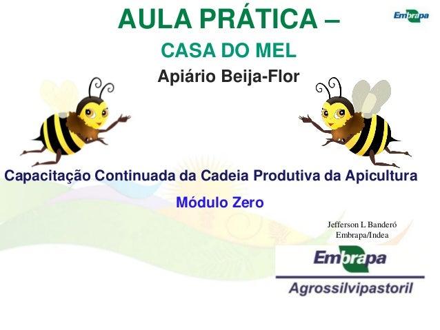 AULA PRÁTICA –                     CASA DO MEL                    Apiário Beija-FlorCapacitação Continuada da Cadeia Produ...
