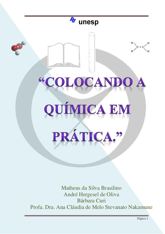 Matheus da Silva Brasilino André Hergesel de Oliva Bárbara Curi Profa. Dra. Ana Cláudia de Melo Stevanato Nakamune Página ...
