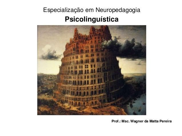 Especialização em Neuropedagogia  Psicolinguística  Prof.: Msc. Wagner da Matta Pereira
