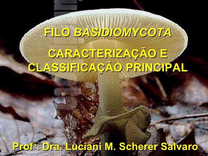 FILO  BASIDIOMYCOTA CARACTERIZAÇÃO E CLASSIFICAÇÃO PRINCIPAL Prof a . Dra. Luciani M. Scherer Salvaro