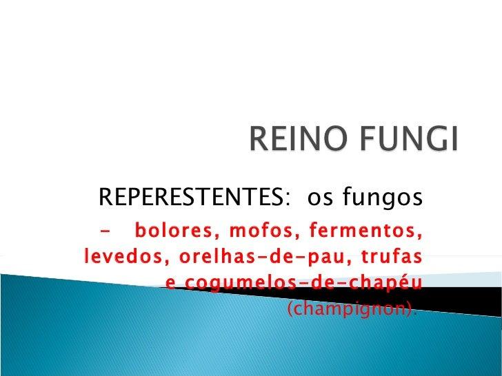 REPERESTENTES:  os fungos -  bolores, mofos, fermentos, levedos, orelhas-de-pau, trufas e cogumelos-de-chapéu  (champignon...