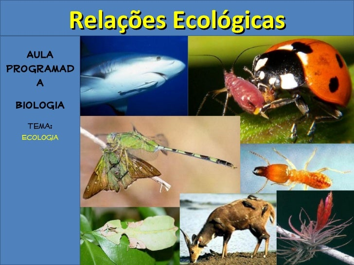 Relações Ecológicas   AulaProgramad    a Biologia   Tema:  Ecologia