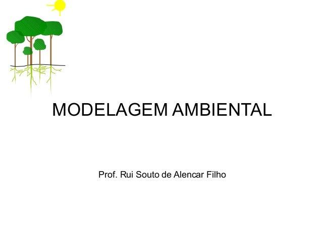 MODELAGEM AMBIENTAL  Prof. Rui Souto de Alencar Filho