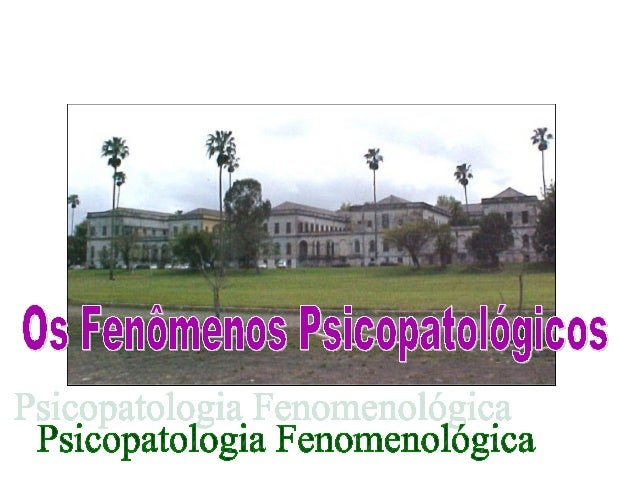 Psicopatologia Fenomenológica 1 • Origem da filosofia alemã fenomenológica • Métodos: 1. Descritivo e o de Karl Jaspers- o...