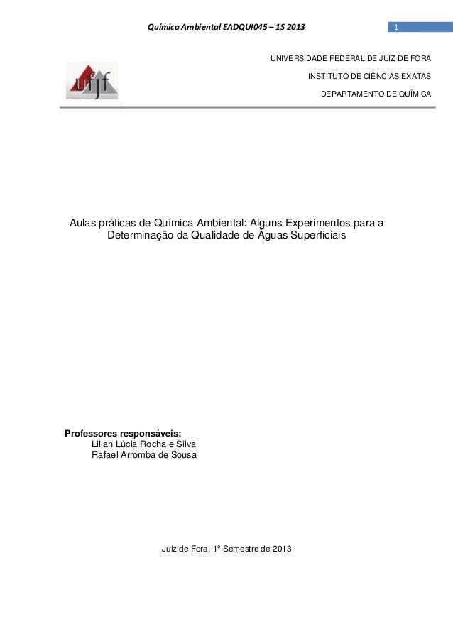 1Química Ambiental EADQUI045 – 1S 2013 UNIVERSIDADE FEDERAL DE JUIZ DE FORA INSTITUTO DE CIÊNCIAS EXATAS DEPARTAMENTO DE Q...