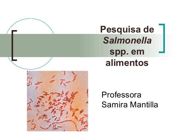 Pesquisa de Salmonella spp. em alimentos Professora Samira Mantilla