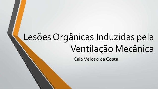 Lesões Orgânicas Induzidas pela Ventilação Mecânica CaioVeloso da Costa