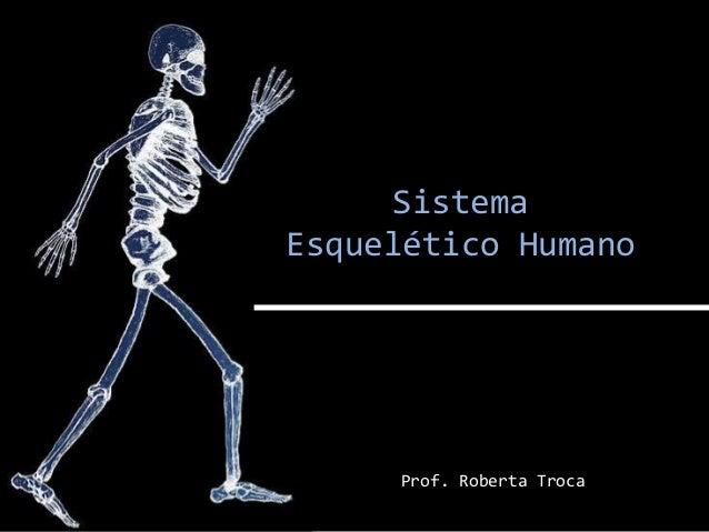 Sistema Esquelético Humano Prof. Roberta Troca