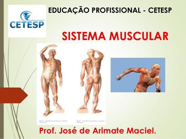 SISTEMA MUSCULAR Prof. José de Arimate Maciel. EDUCAÇÃO PROFISSIONAL - CETESP