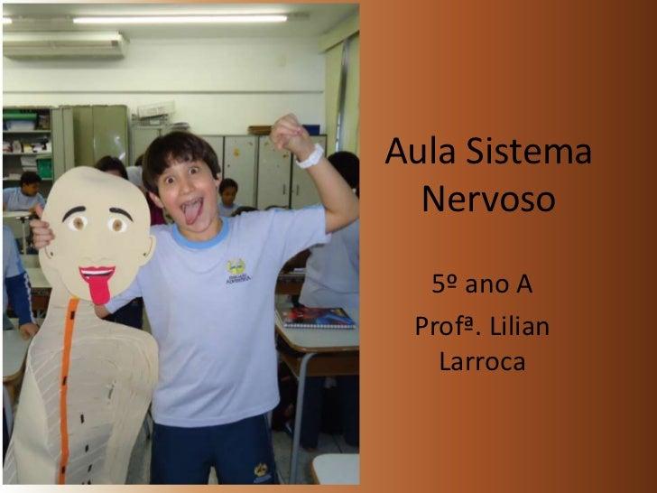 Aula Sistema Nervoso<br />5º ano A<br />Profª. Lilian Larroca<br />