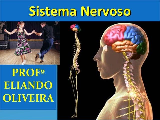 PROFº ELIANDO OLIVEIRA Sistema NervosoSistema Nervoso